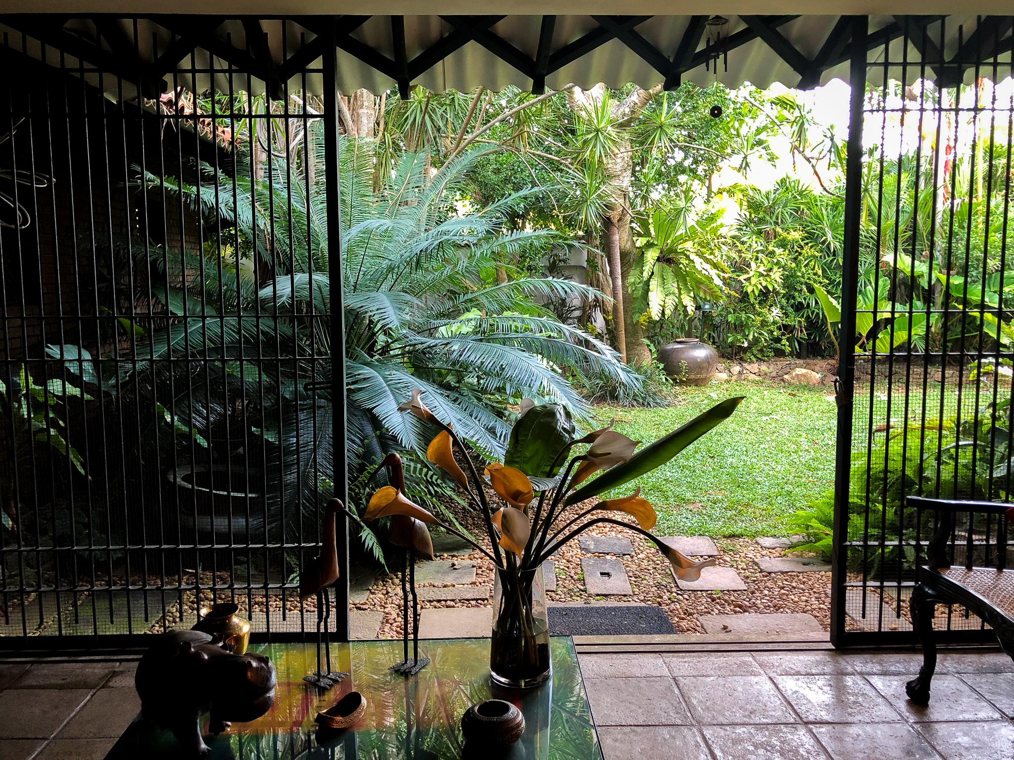 A vista of a courtyard from inside Nela de Zoysa'a house