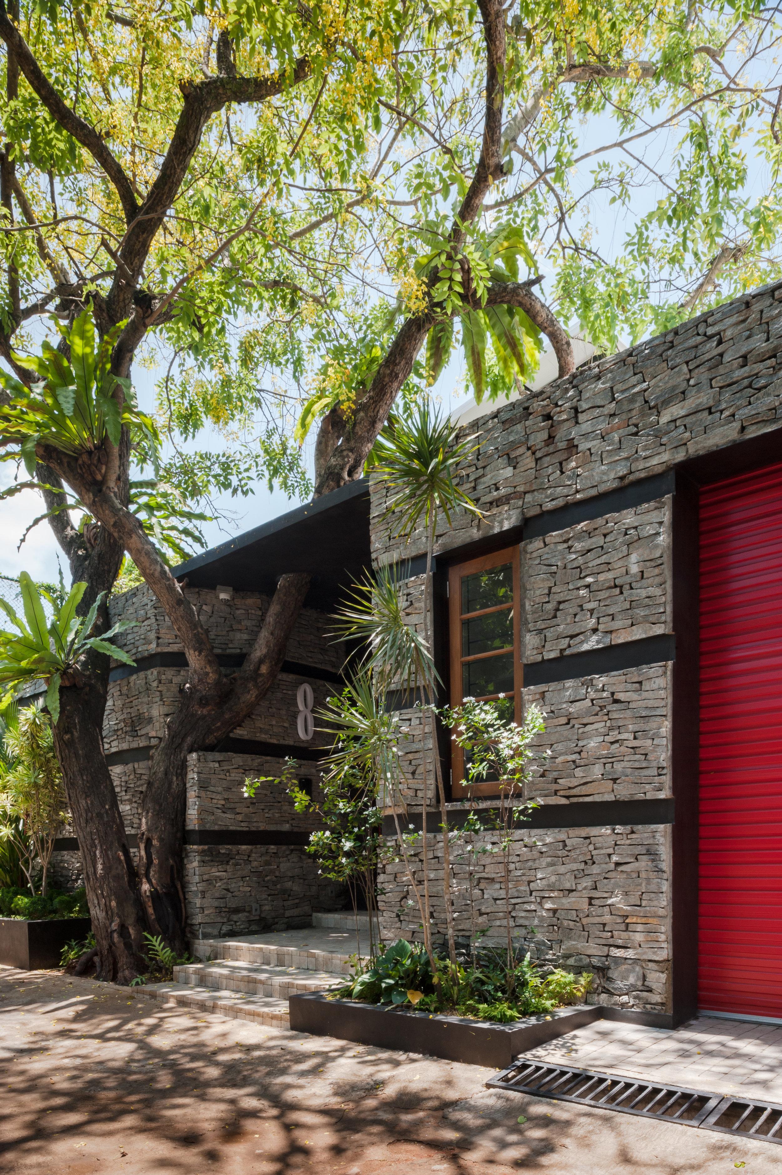 House No. 8 - The Ehela Tree