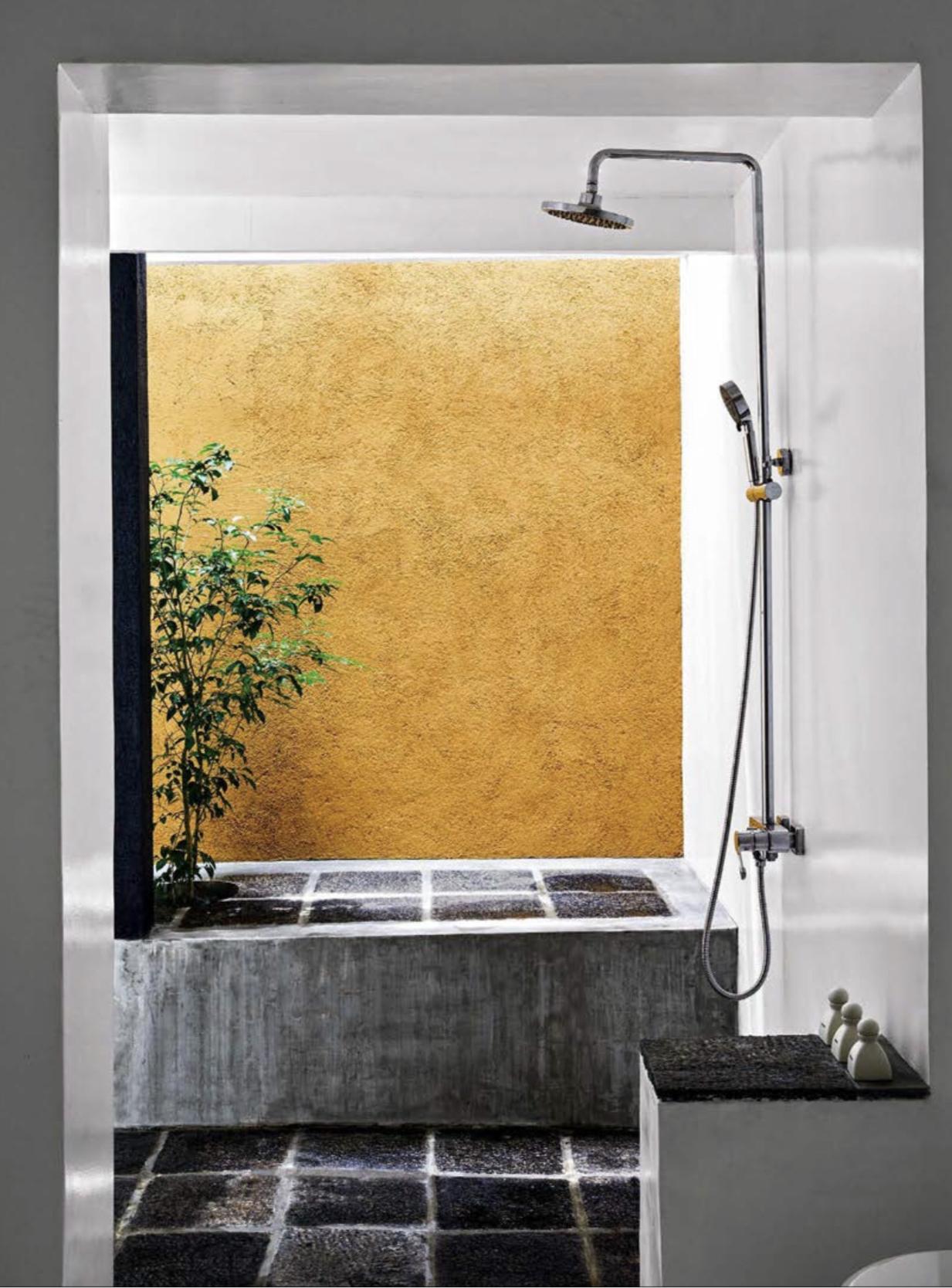 Open shower in guest bedroom