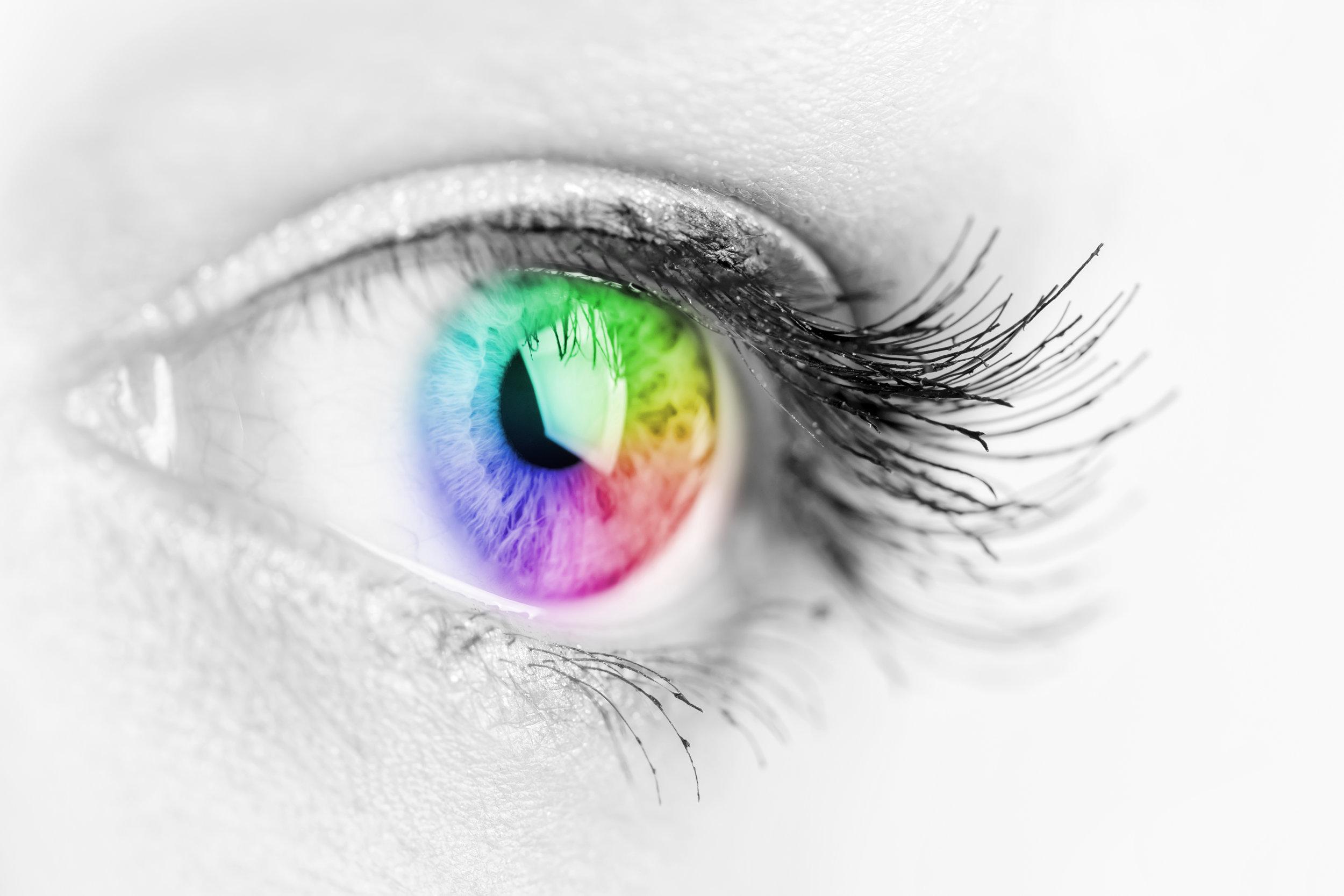 Visual Intelligence -