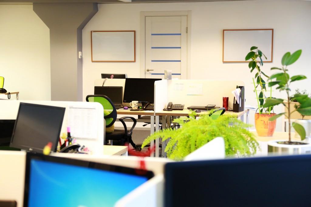 Mirta-office-6-1024x683.jpg