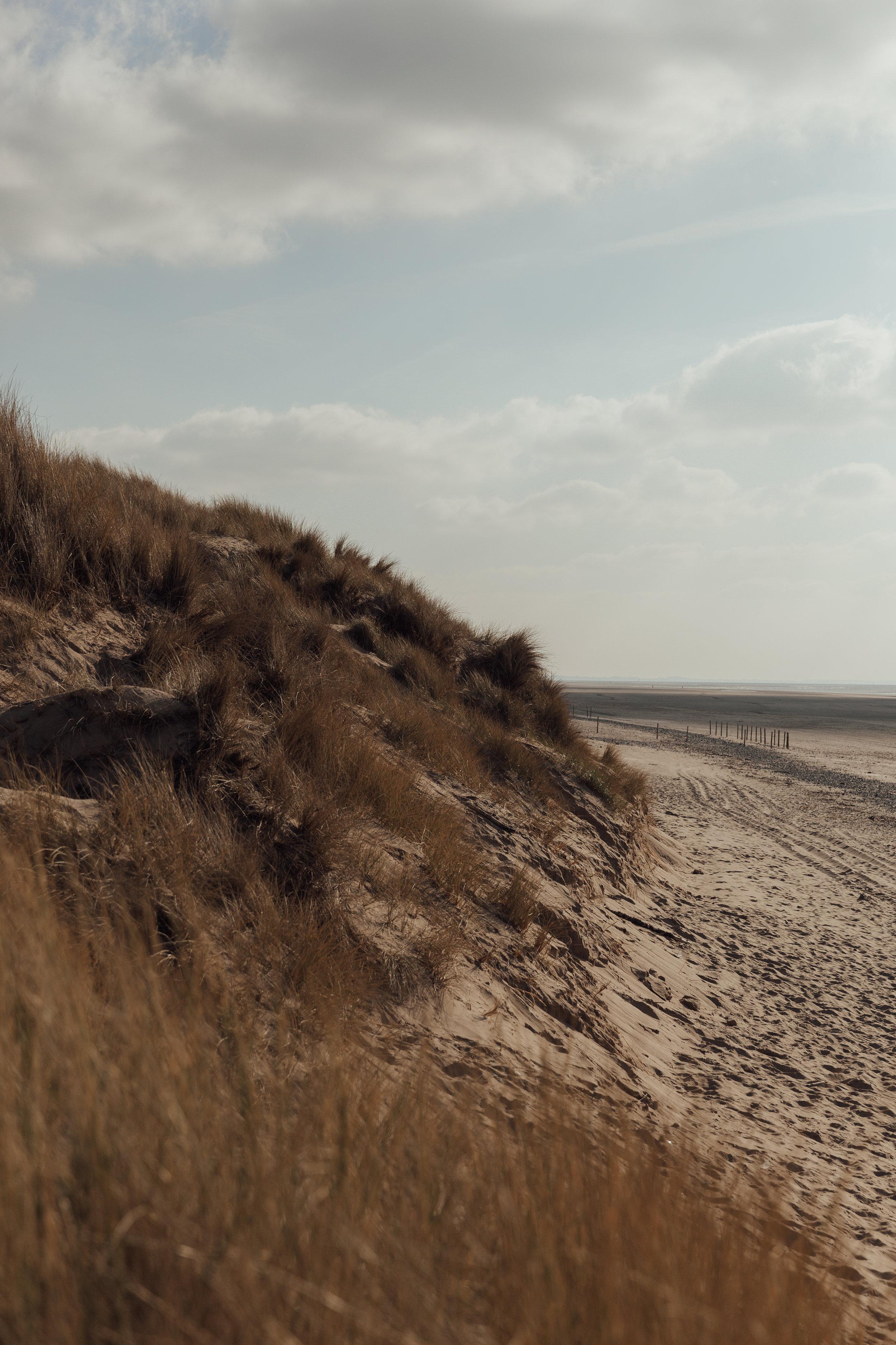beach-0198.jpg