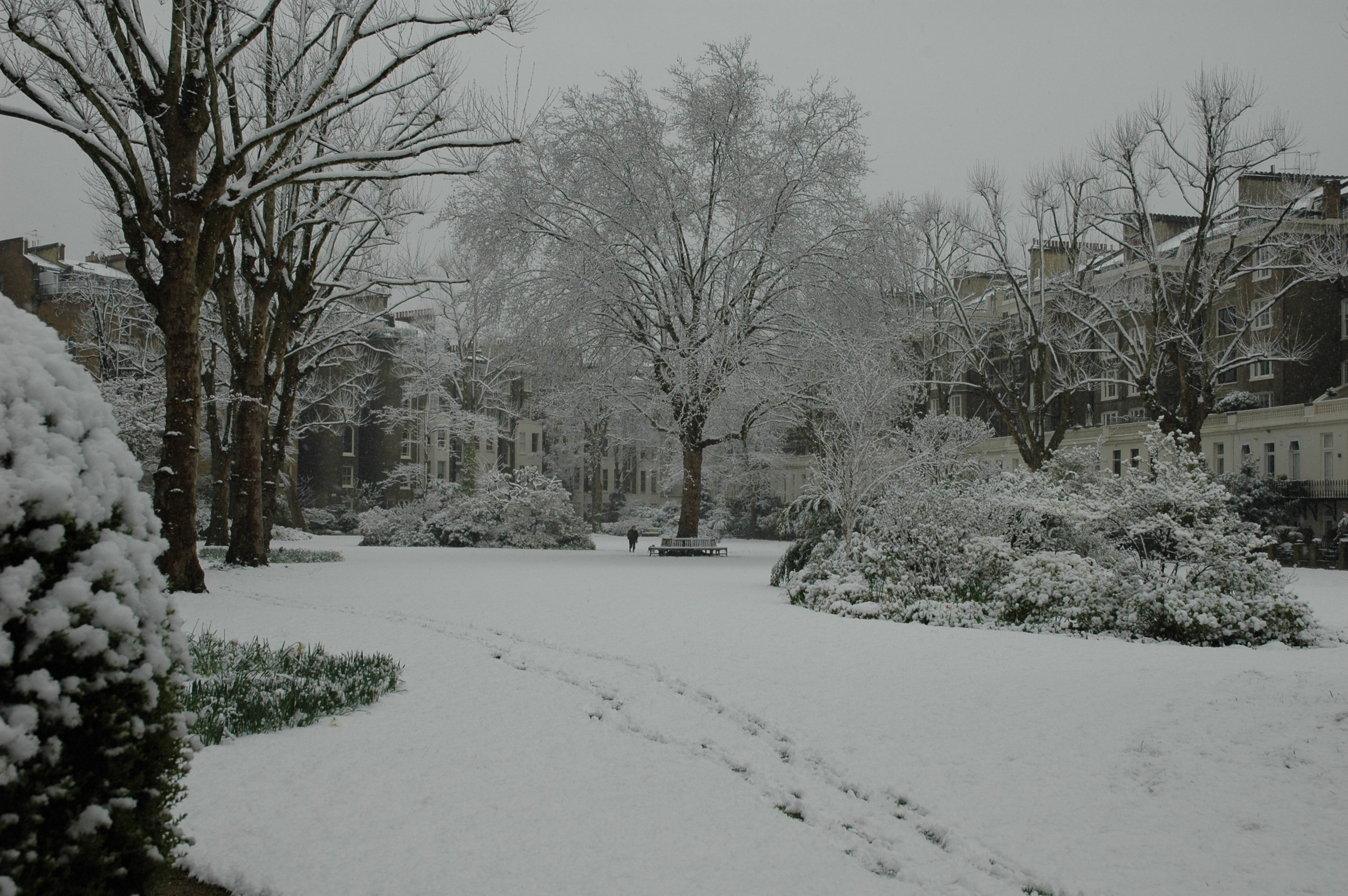 Snow Best 1.JPG