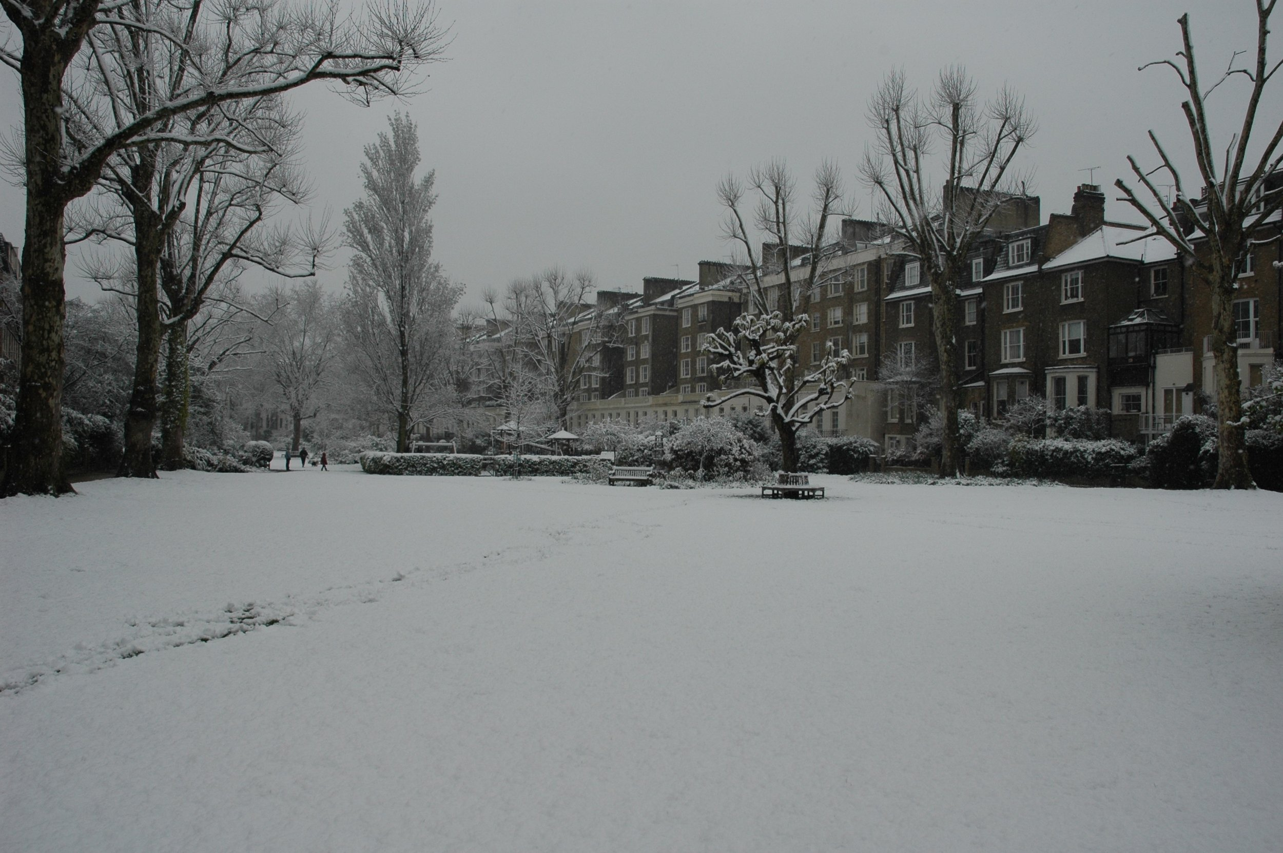 Snow Best 2.JPG