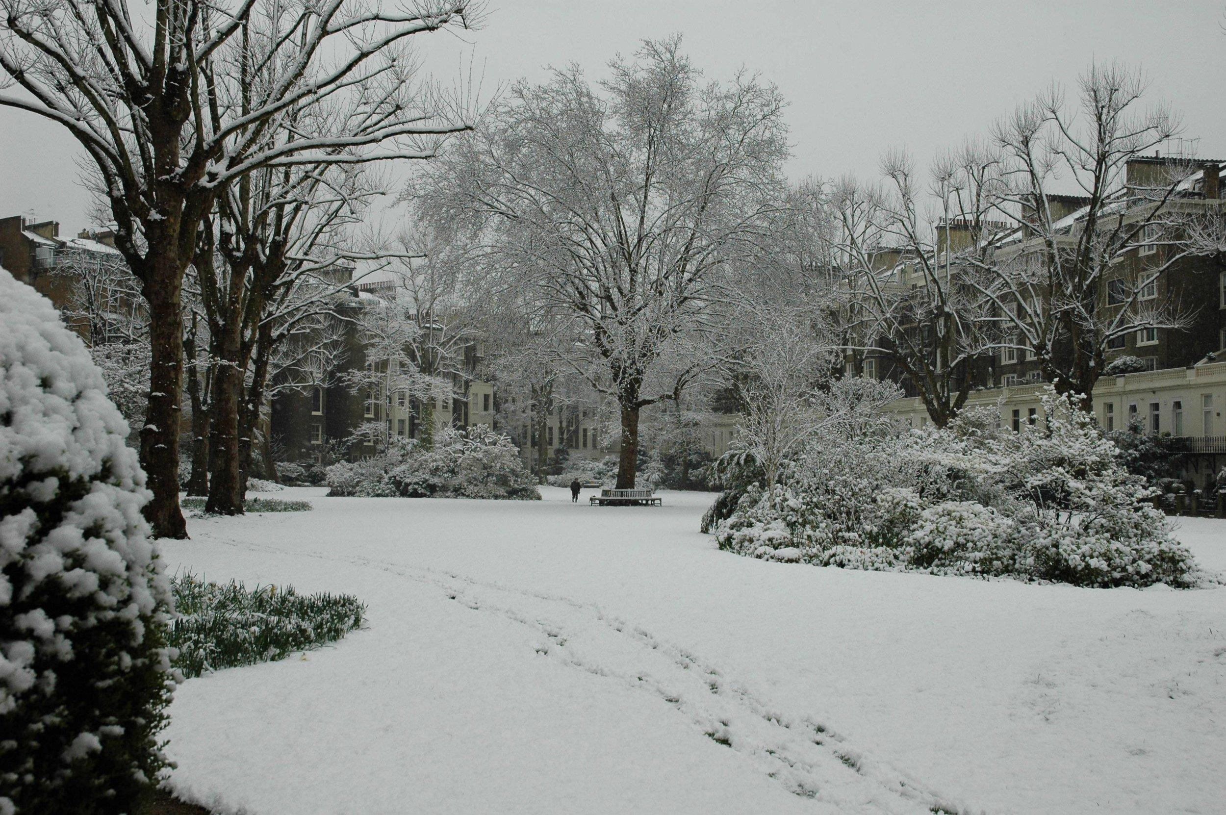 Snow-Best-1-web.jpg