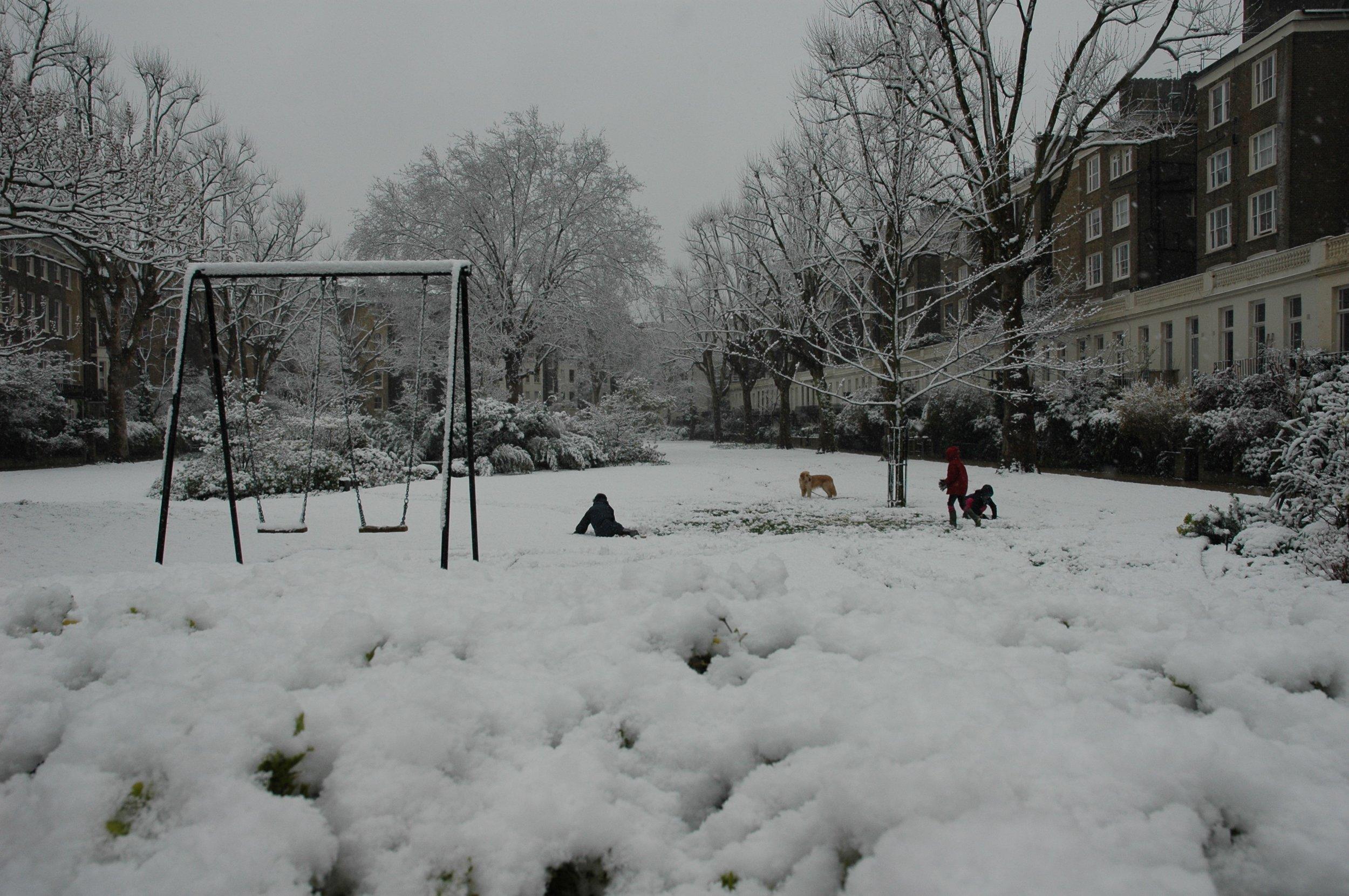 Snowy Swings.JPG
