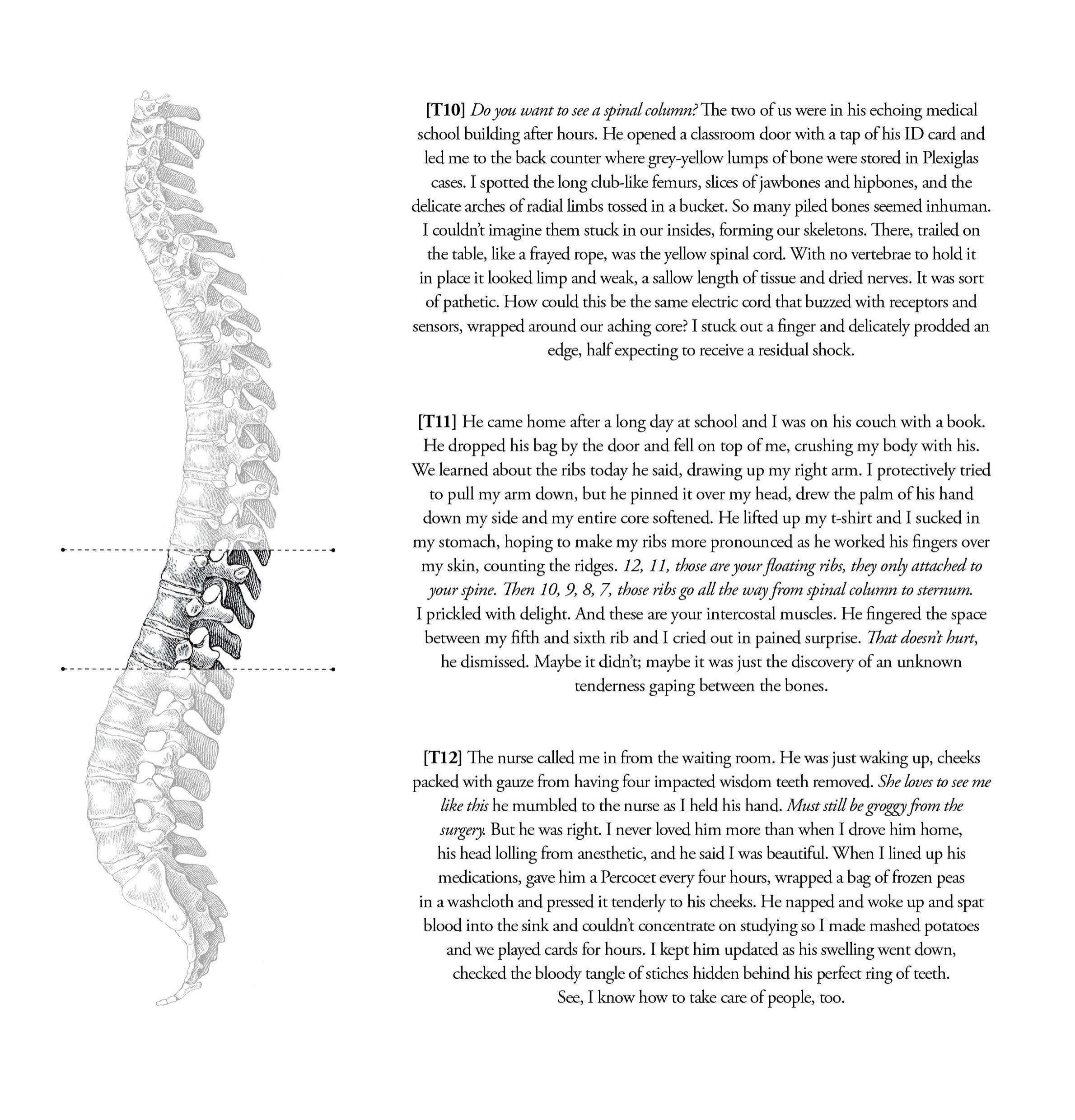 TNS019_Dislocation4.jpg