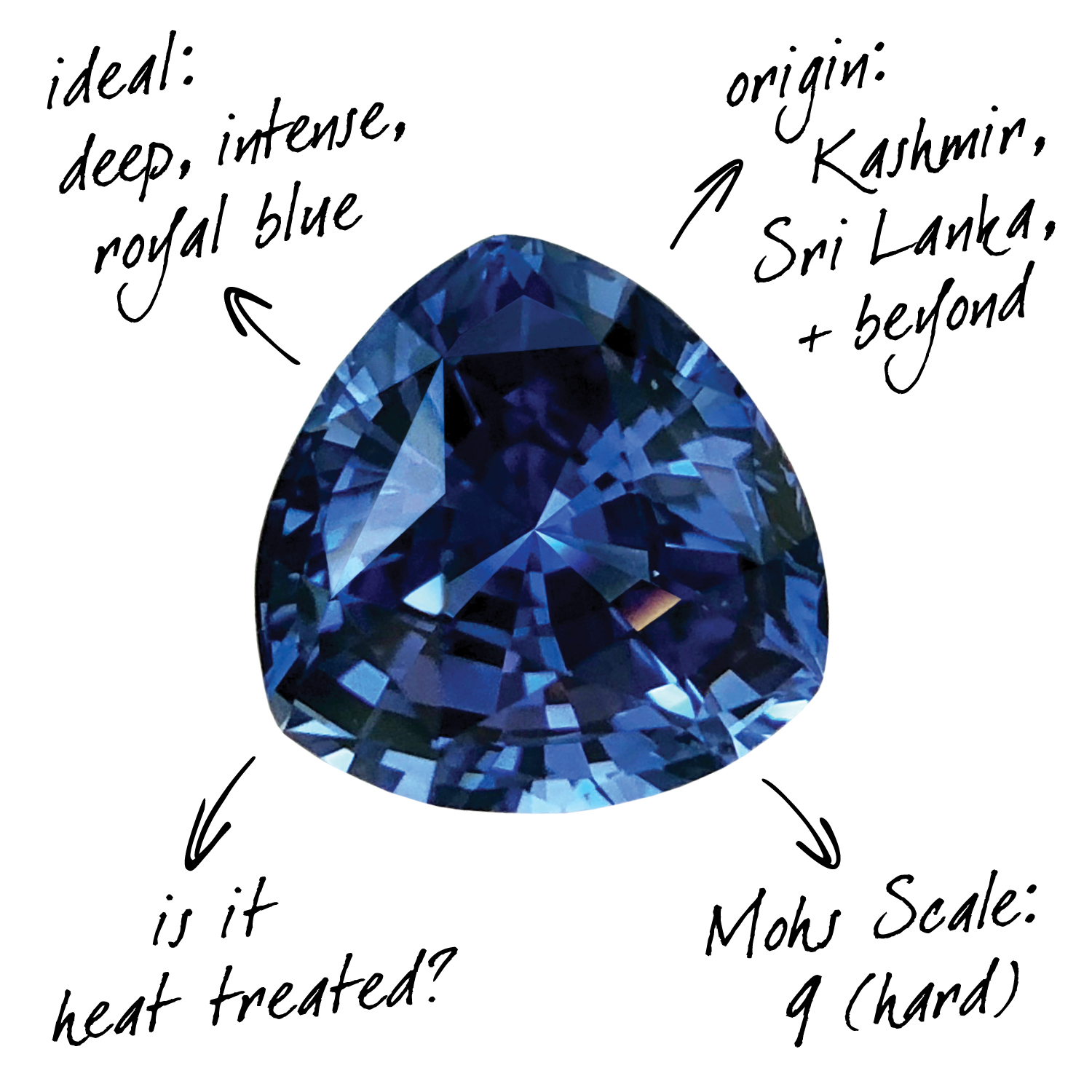 Sapphire Nash James What To Know