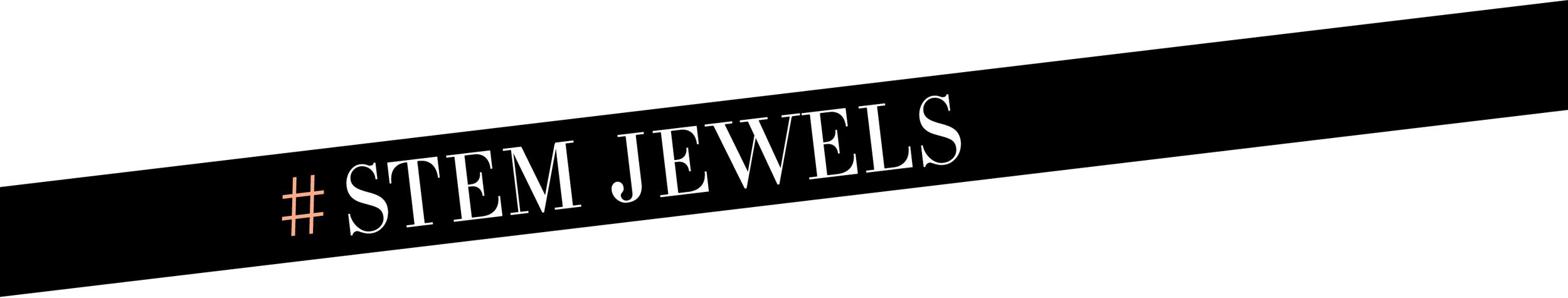 STEM Jewels
