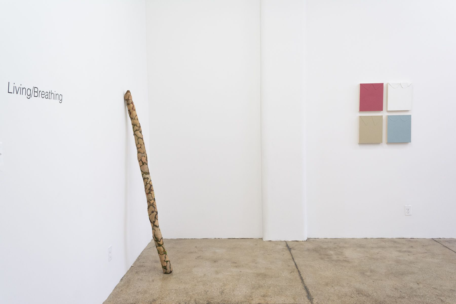 Installation View (Courtesy of Morgan Lehman Gallery)