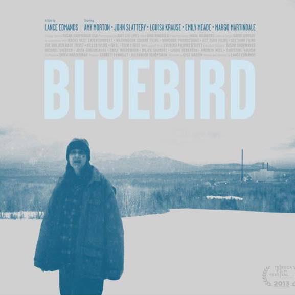 Bluebird-square.jpg
