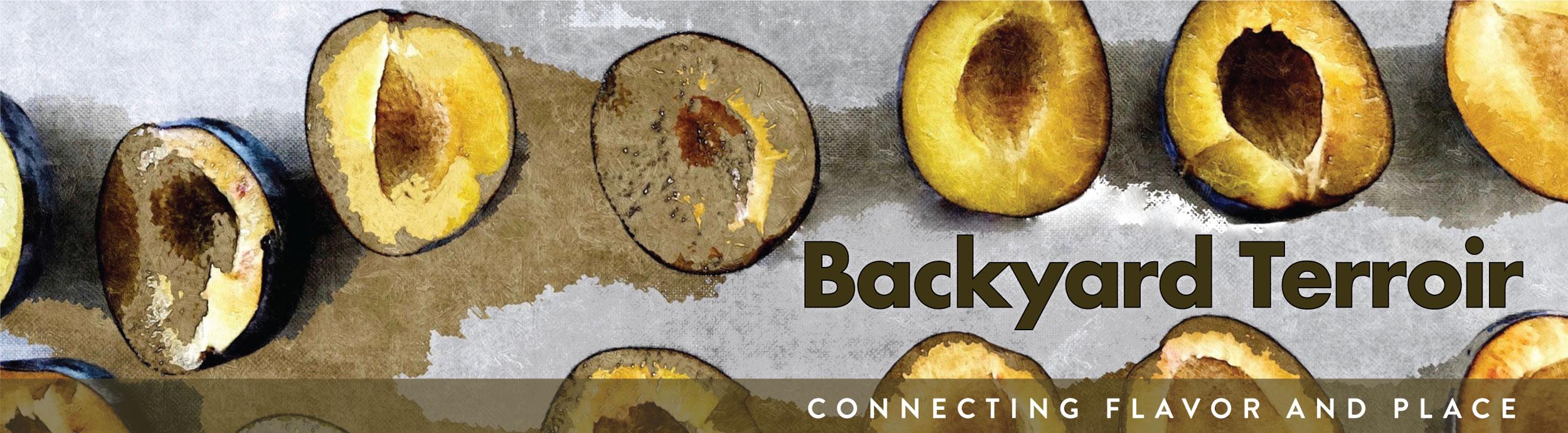 Backyard_terroir-logo-web.jpg