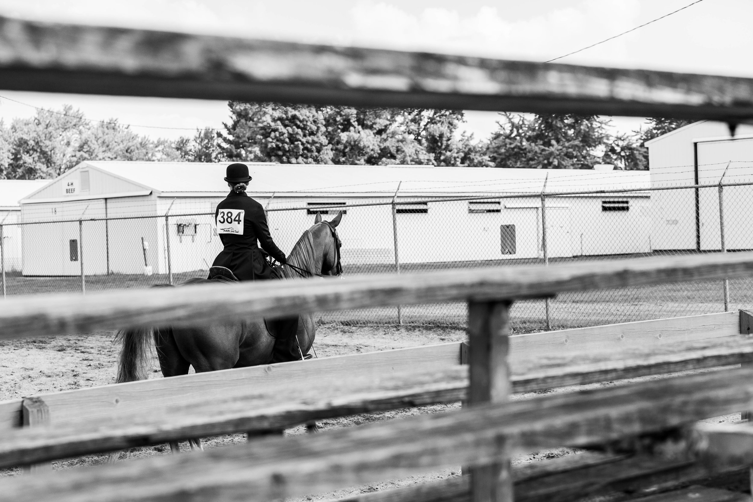 Andrea Horse (13 of 39).jpg