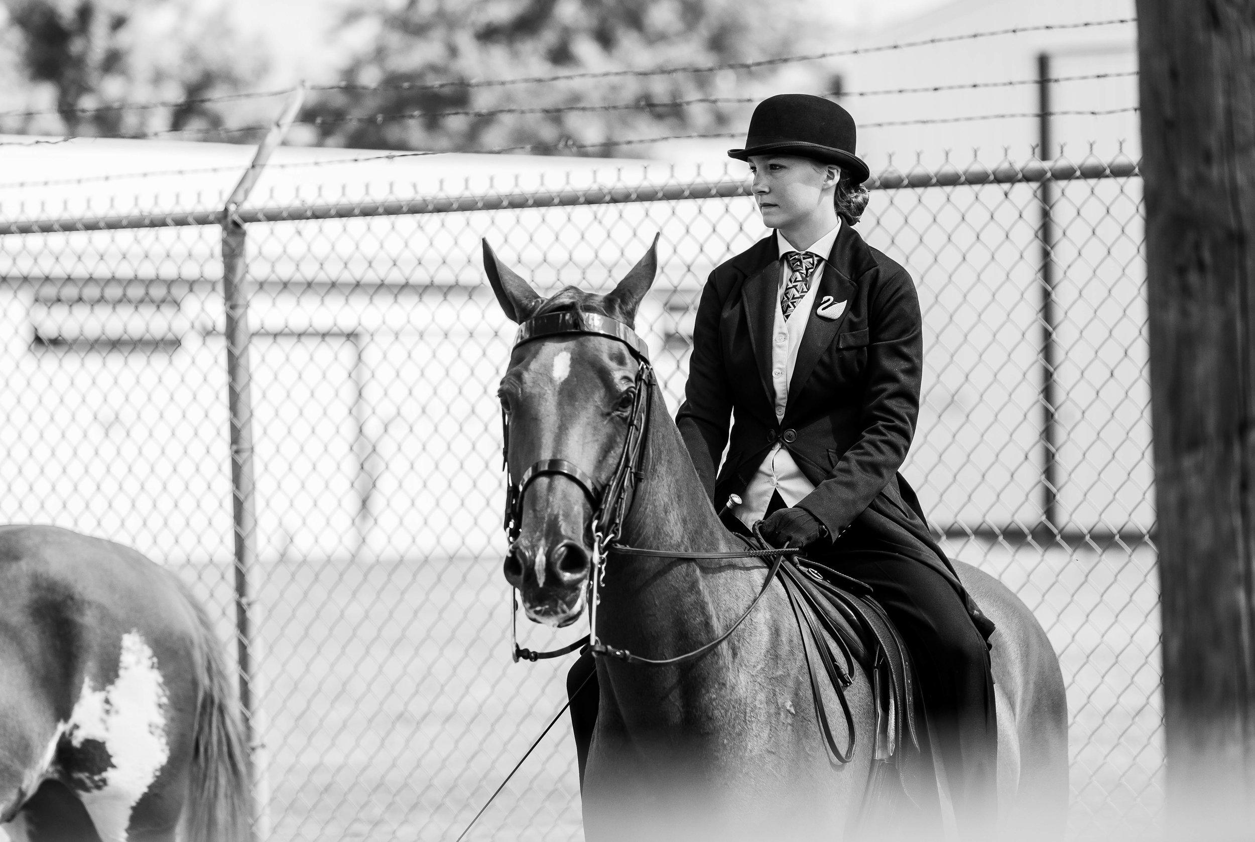 Andrea Horse (16 of 39).jpg
