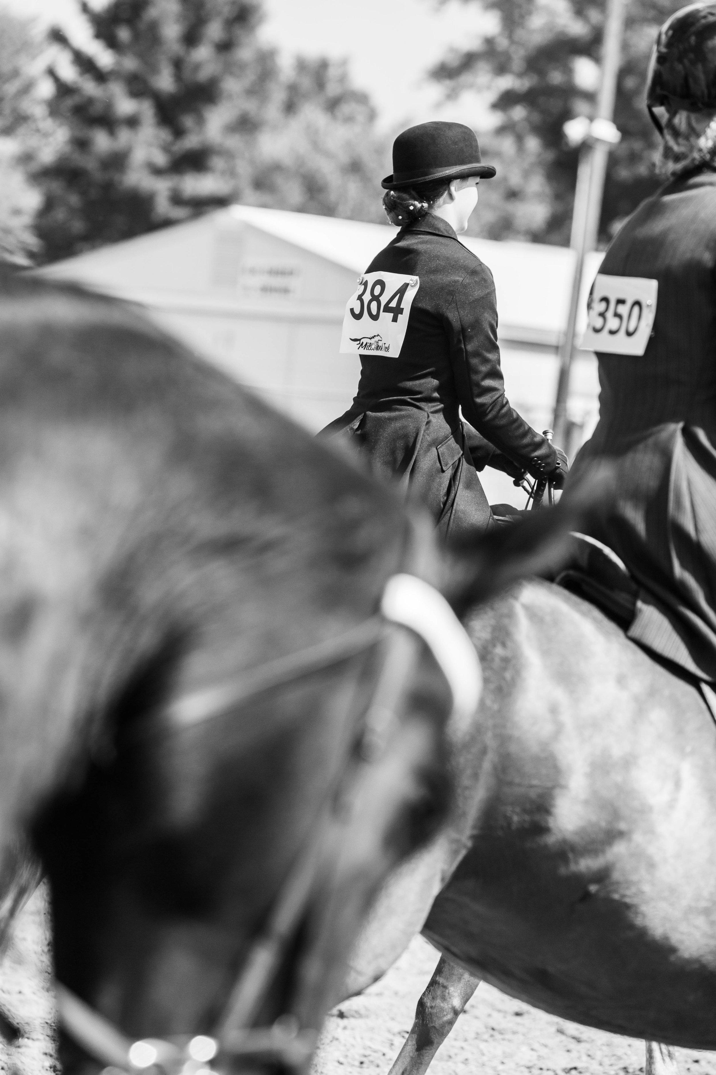Andrea Horse (23 of 39).jpg