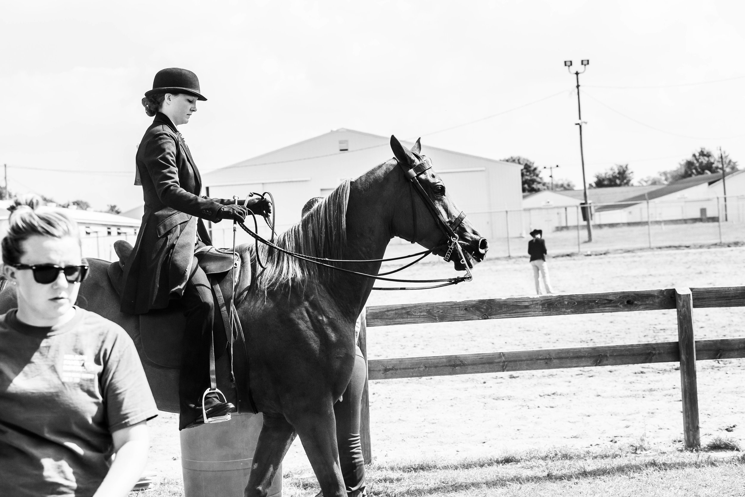Andrea Horse (30 of 39).jpg