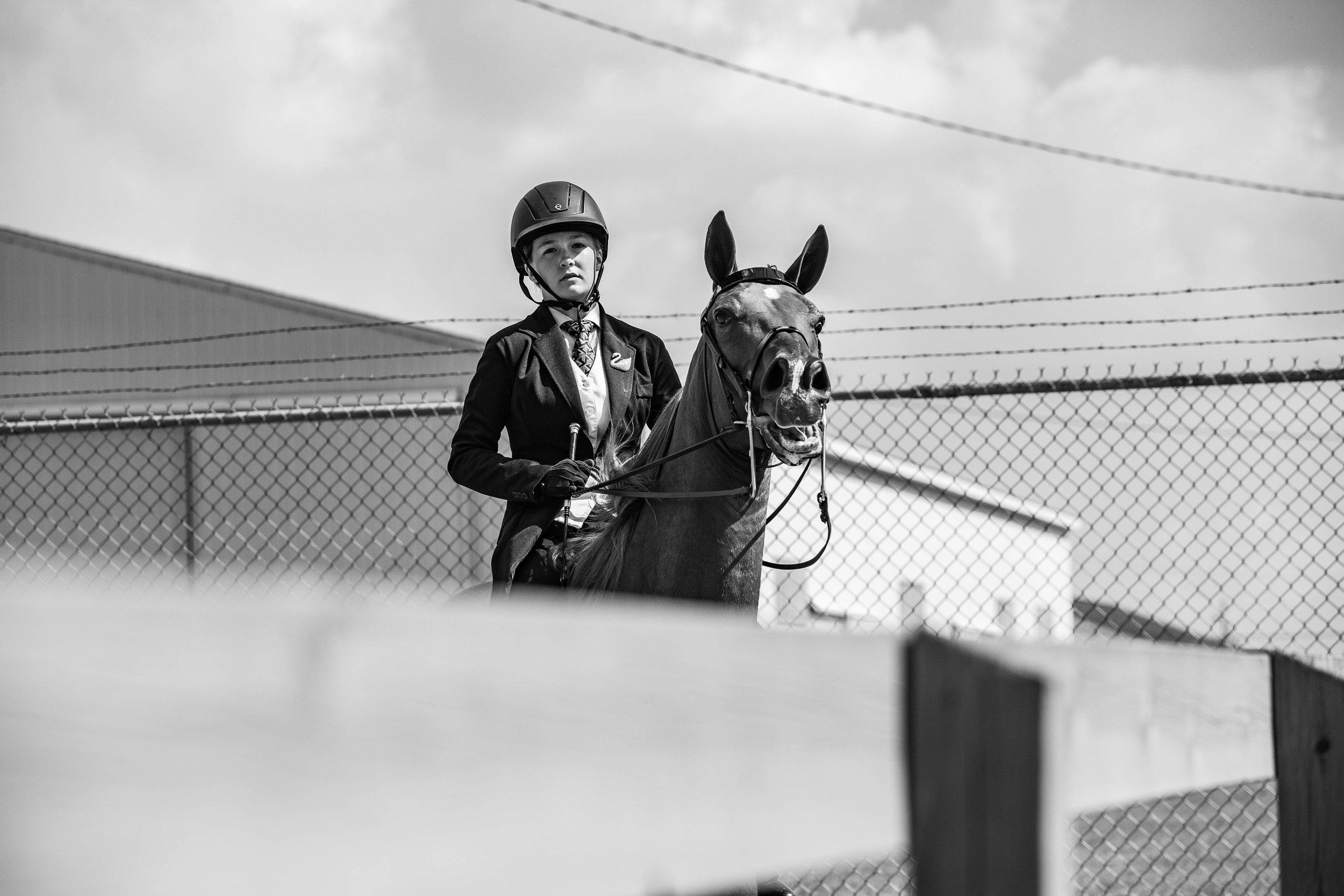 Andrea Horse (34 of 39).jpg
