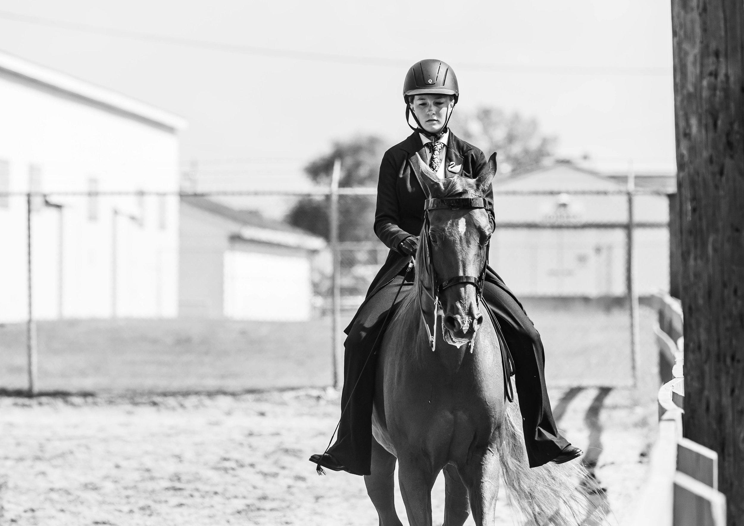 Andrea Horse (37 of 39).jpg