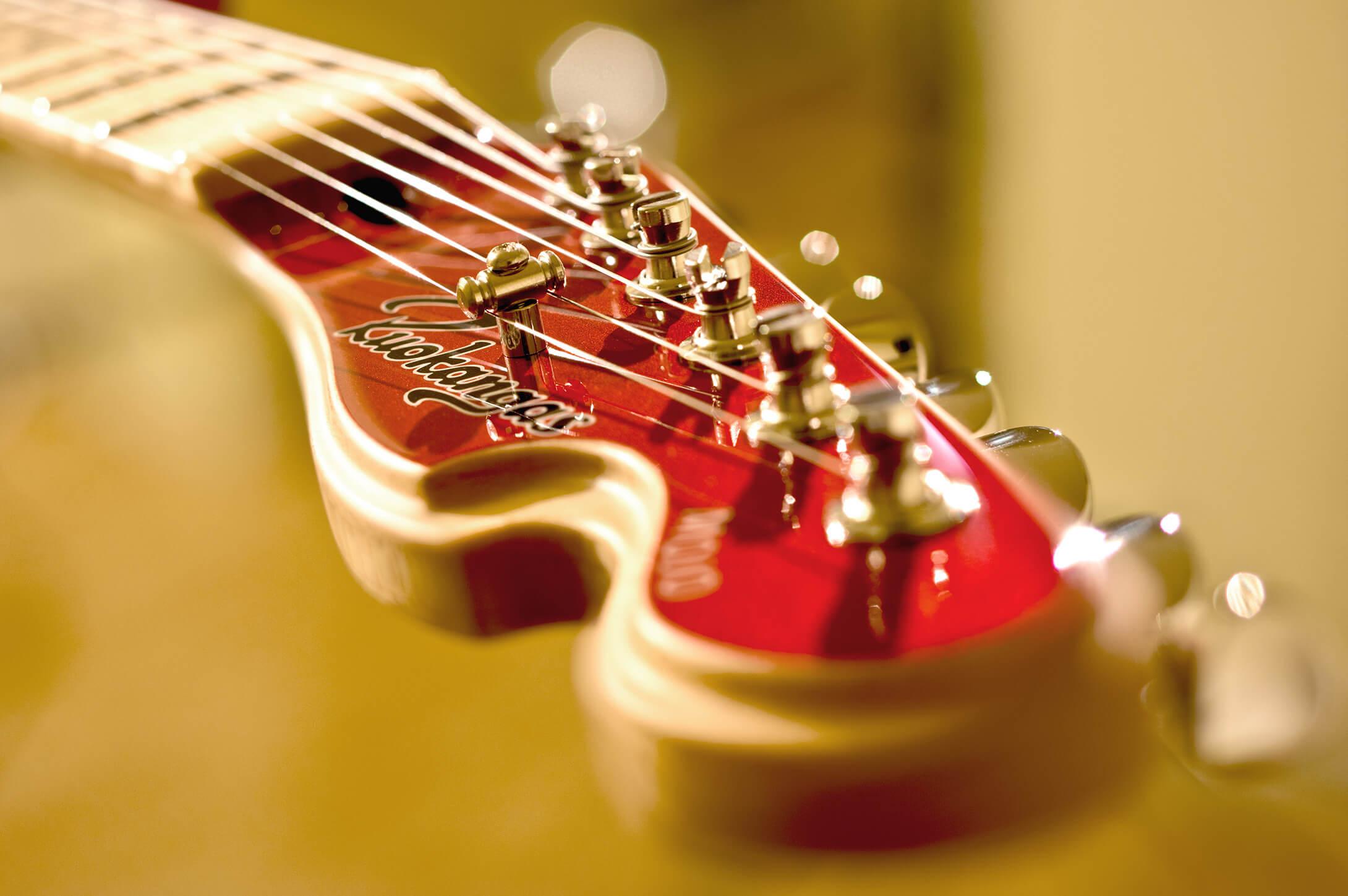 Ruokangas Guitars - Harviala