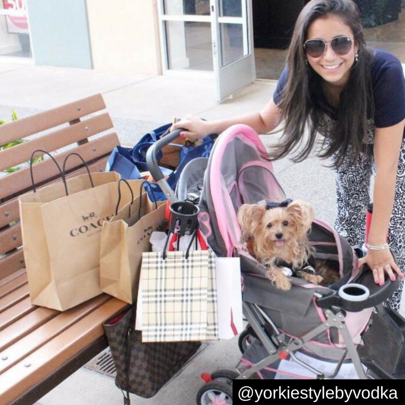 8. Cuando tienes a tu cómplice de compras y lo llevas a los centros comerciales pet friendly.