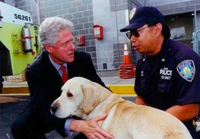 Sirius  fue el único perro de rescate que murió trabajando, él estaba en la torre sur cuando hubo una explosión en la torre norte.