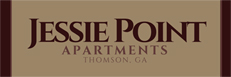 Jessie Point Apartments The Mullins Companies.jpg