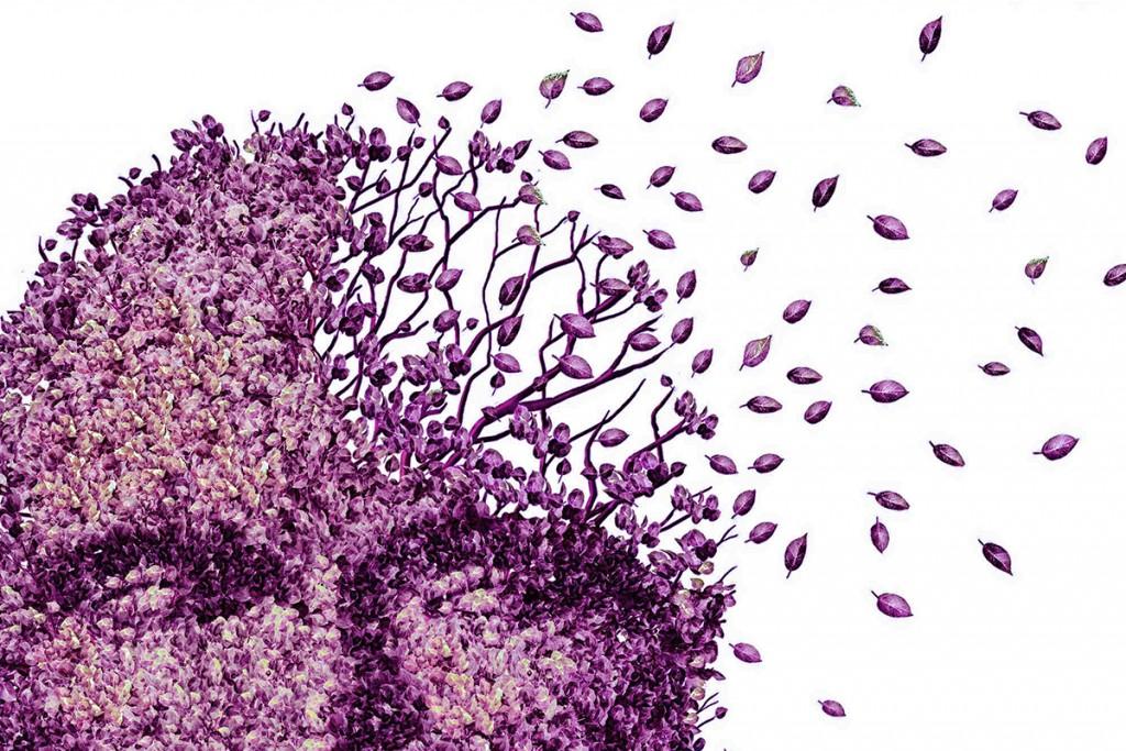 demencia-1024x683.jpg