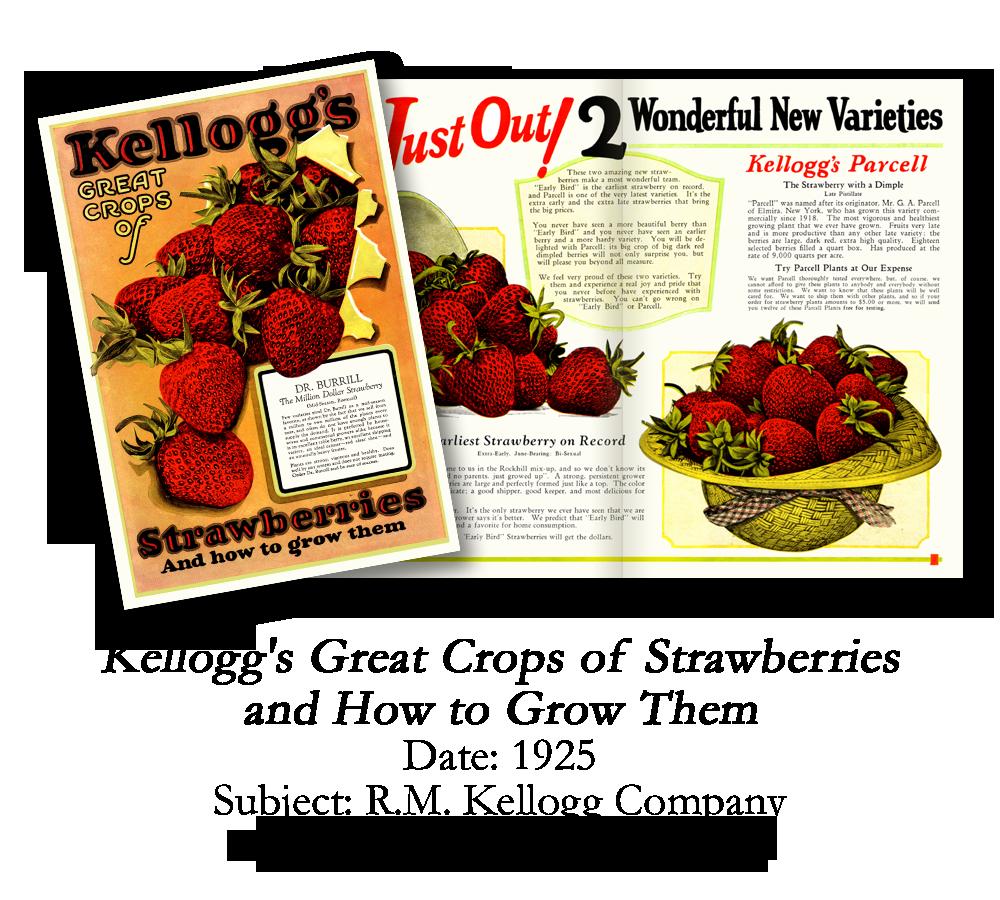 1925 Kellogg Strawberry Catalog