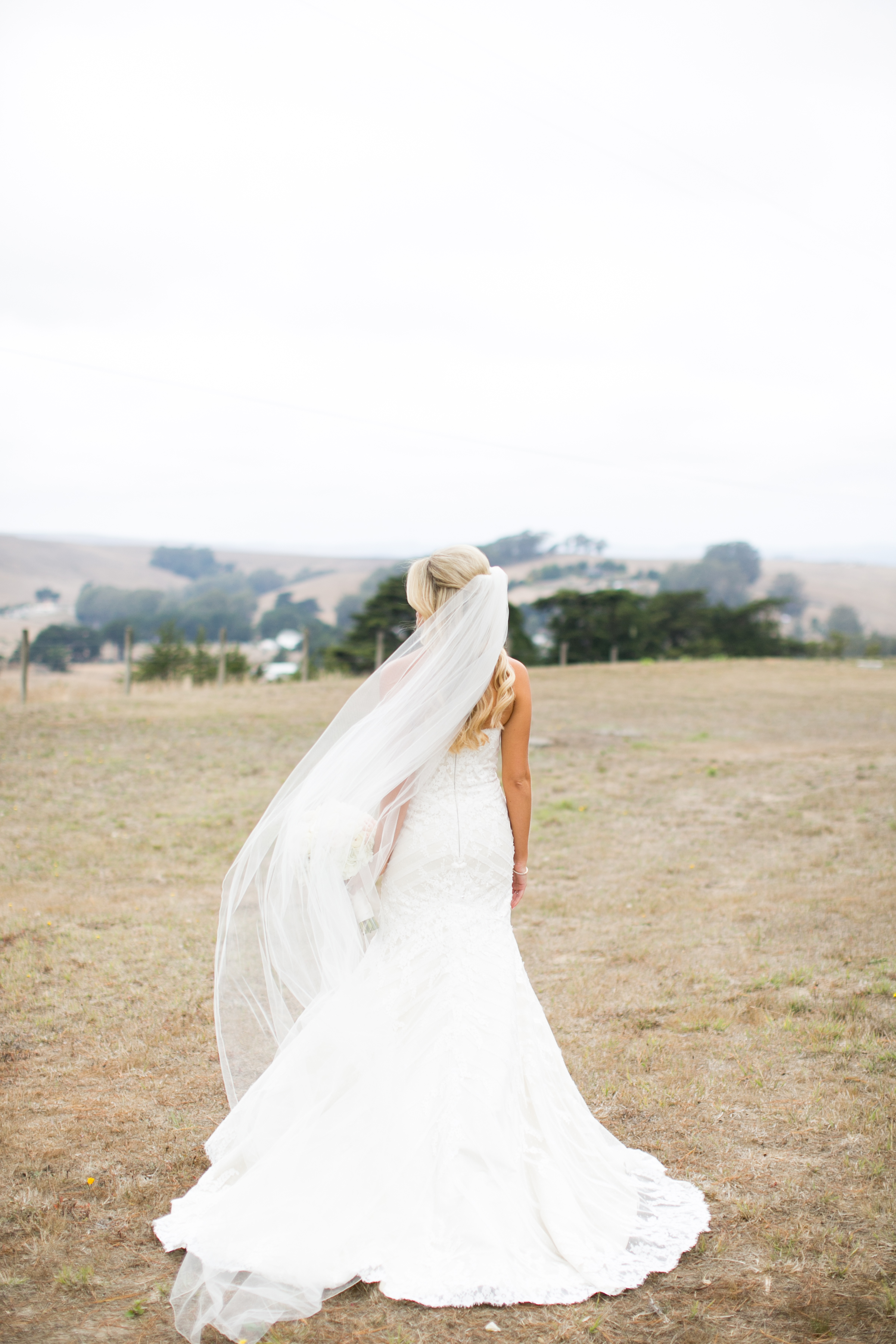 Matelli Wedding-1200.jpg