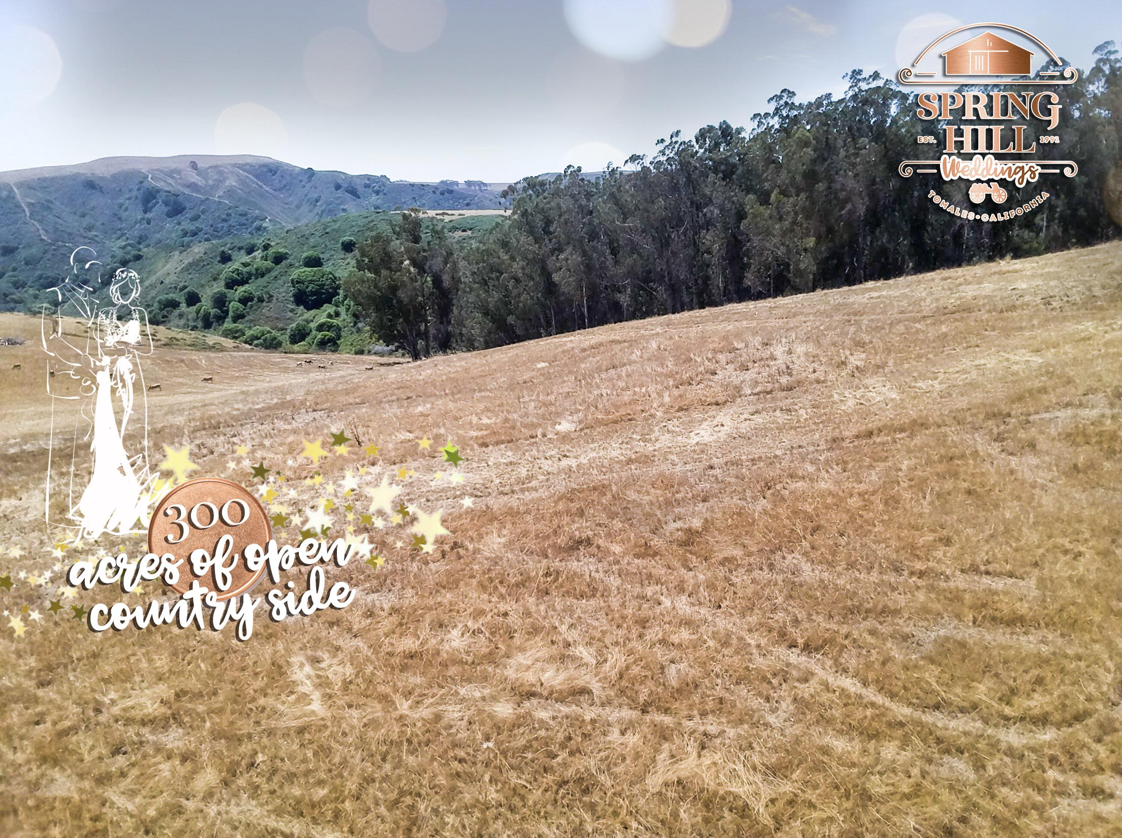 barnyard_Propertie_rental_house_wedding_country_farm_petaluma_bodega_Bay_tomales_CA_94975_94953_San_fran_wedding_countryside_propertie_party_venue_rental_space_event copy.jpg