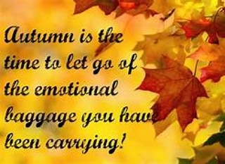 Although most people claim to love the change into fall, it often comes with anxiety, depression,  physical pain,  insomnia and other clues that you are ready to process and let go of old patterns, beliefs, traumas, etc. I can help that process in a gentle and supportive way. #acupunctureevergreen #naturalhealing #autumnblues www.acupunctureevergreen.com