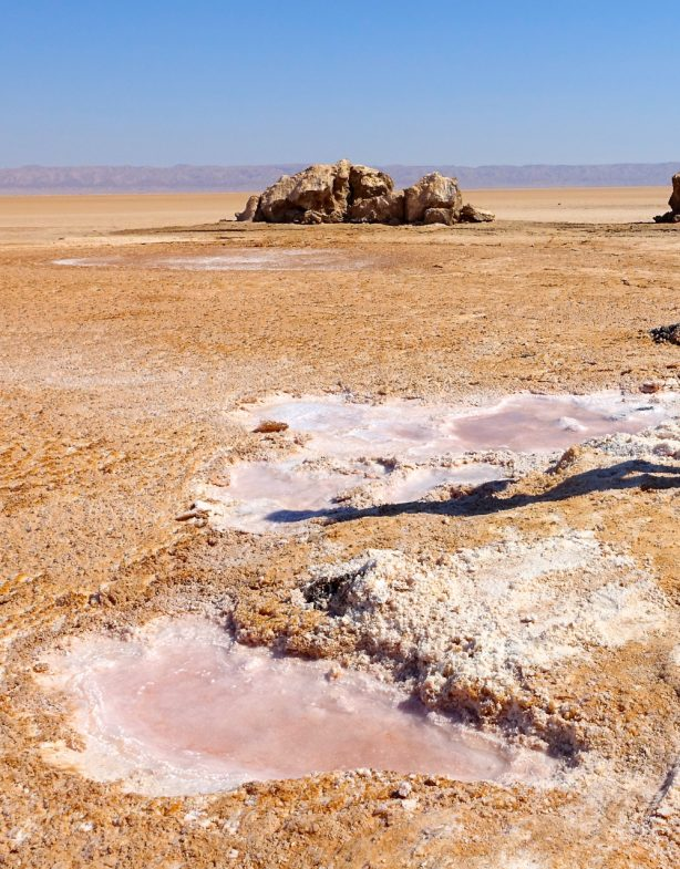 largest-salt-pan-in-sahara-chott-el-djerid-tunisia-614x785.jpg