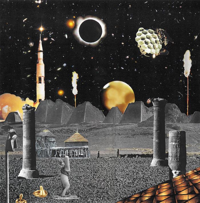 Planetoid Life  by Seana Gavin