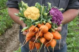 healing fruits and vegetables