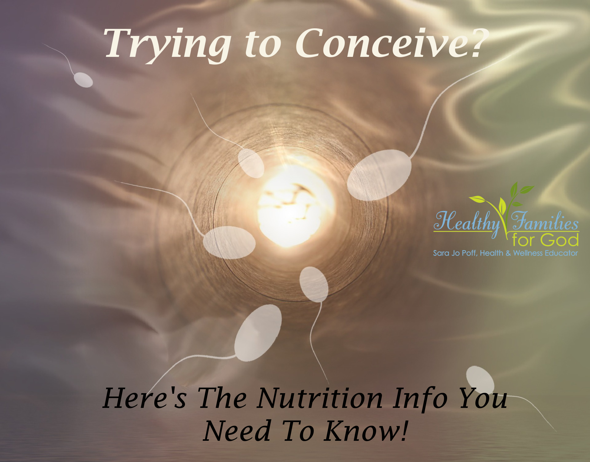 conceive-nutrition.png