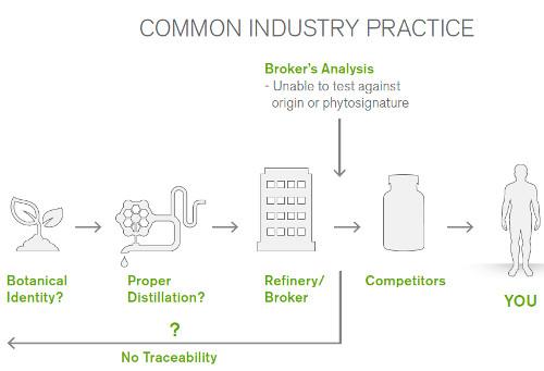 industrypractice-essential-oils