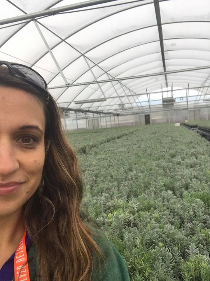 It definitely starts right from the seed with Young Living. This is one of the greenhouses where lavender starts fill the air inside the greenhouse with the strongest and most amazing lavender smell I have ever experienced.