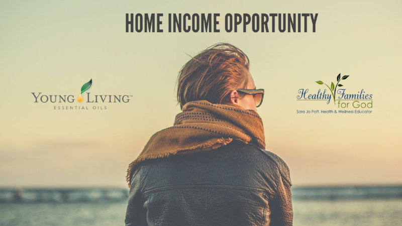 Home Income title.png