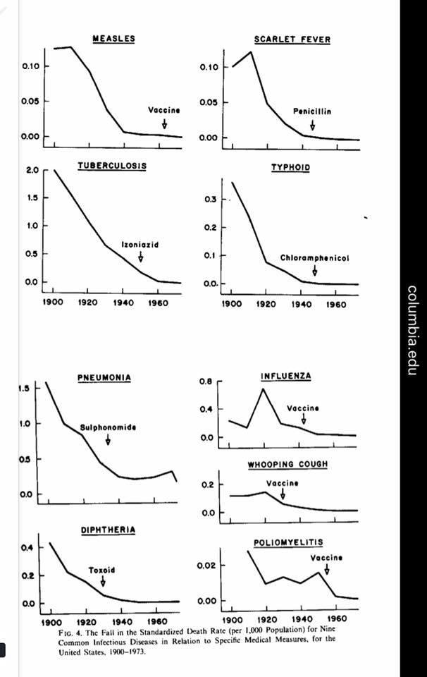 vaccine disease rates.jpg
