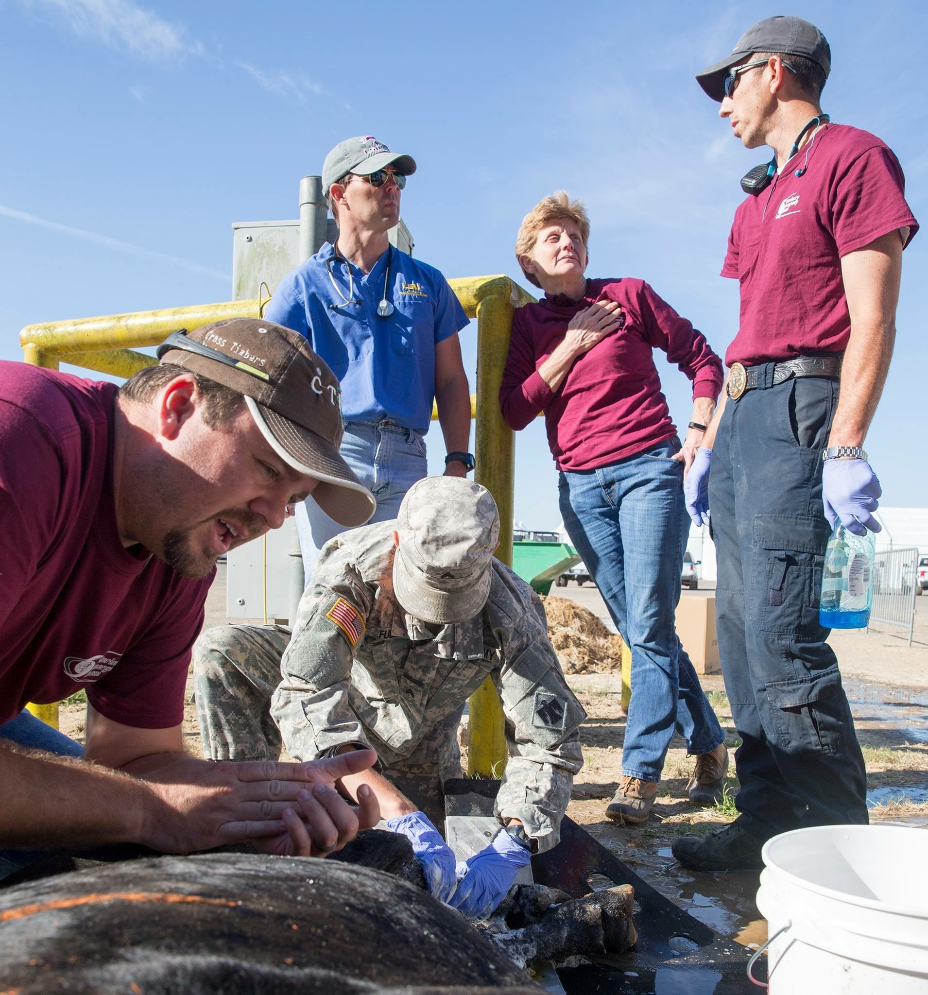 Dr. Stetson Miller assisting the Texas A&M Veterinary Emergency Team in their efforts to offer medical support after Hurricane Harvey.