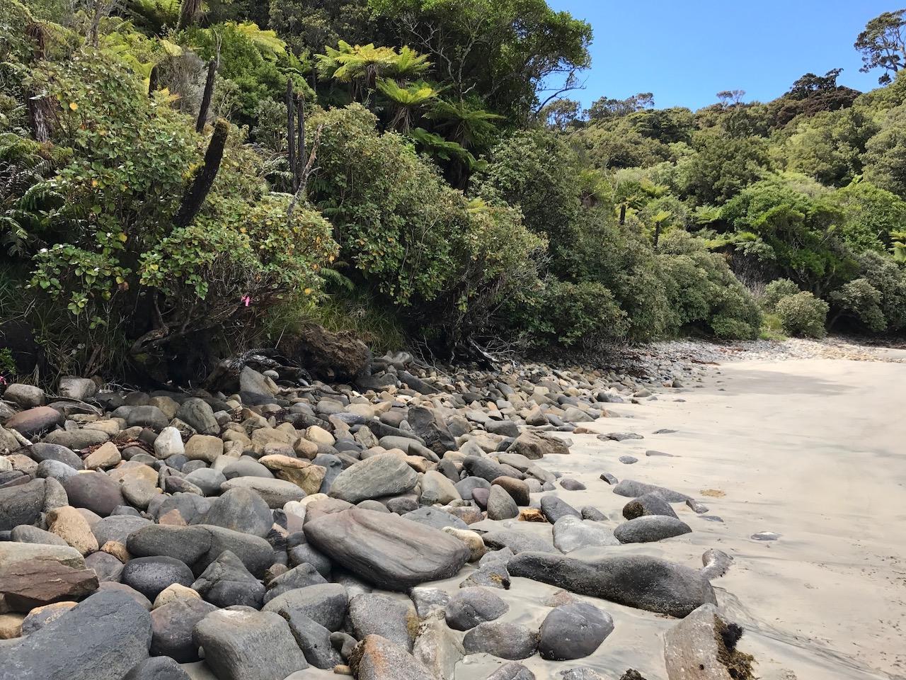 Frenchman's beach rocks.jpg