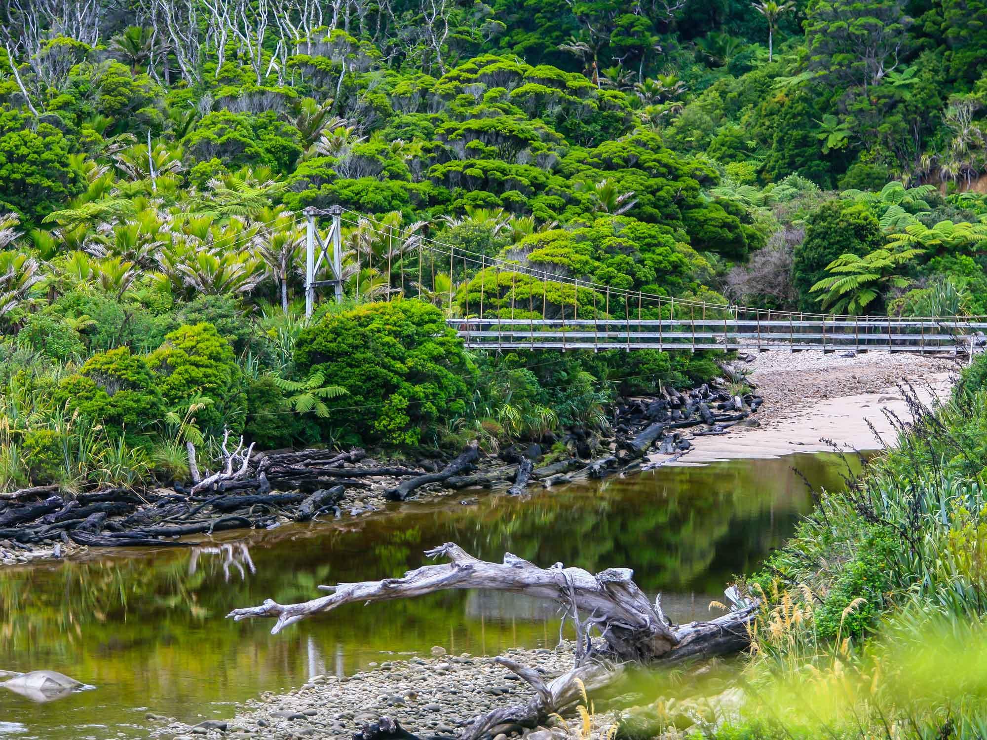 kohaihai-swingbridge.jpg