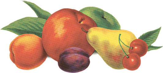 footer-fruit.png