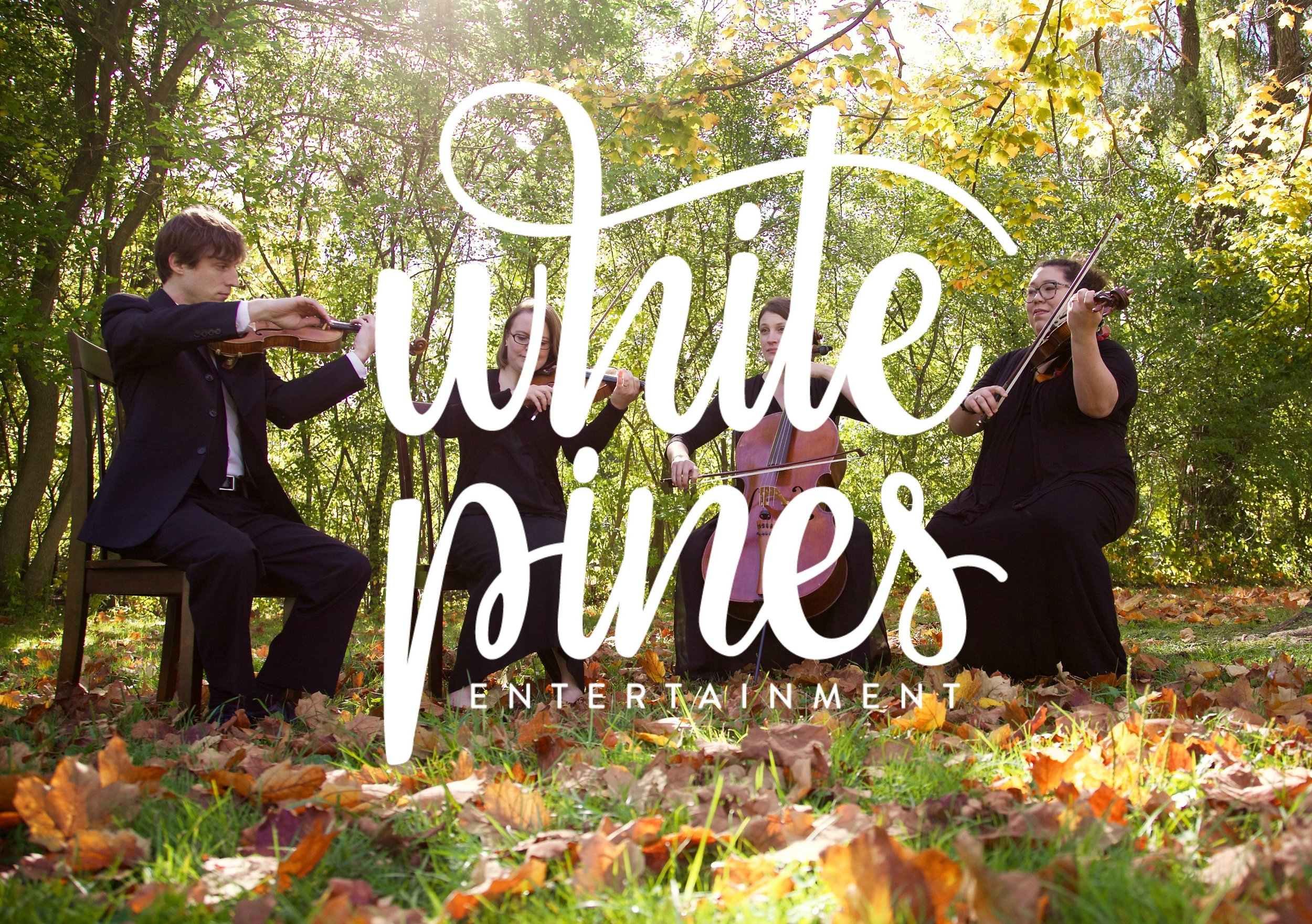 White Pines Entertainment String Quartet for wedding ceremony, and other special events