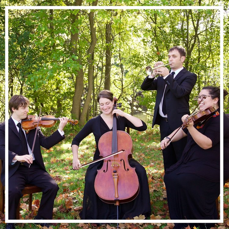 Trumpet and string ensemble for wedding music and ceremony performances.