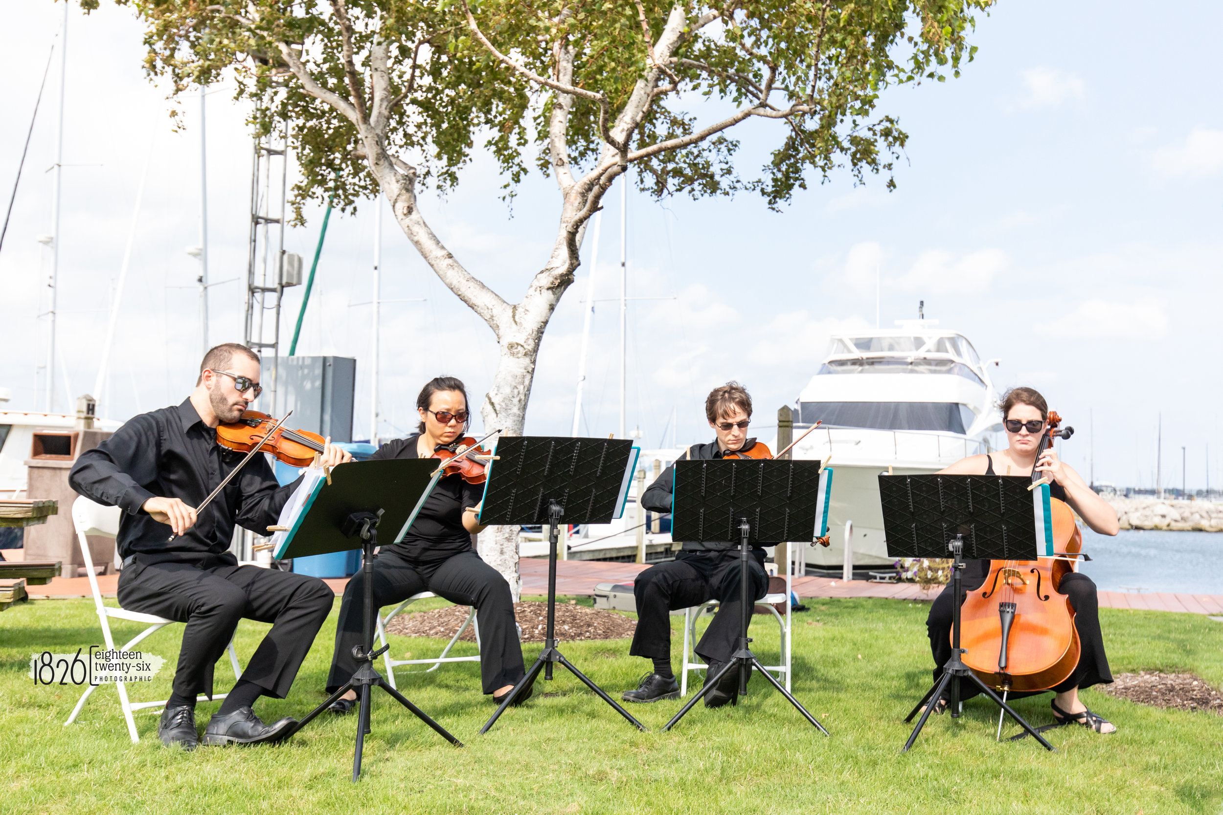 White Pines Entertainment String Quartet playing an all Beatles music prelude. Captured by Jamie with  1826 Photographic