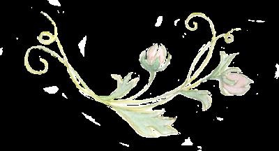 floral for website.png