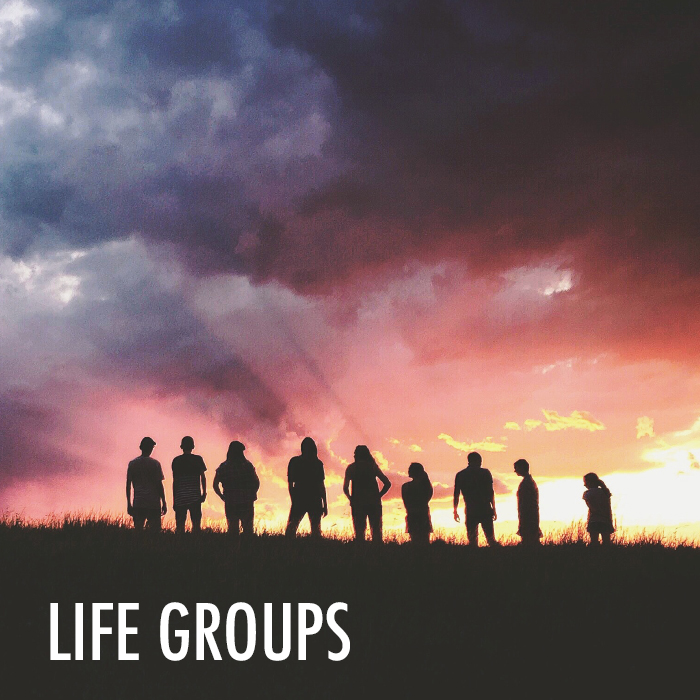 Life Groups Web.jpg