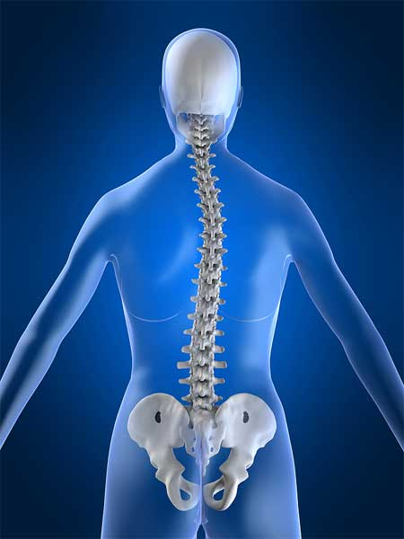 Scoliosis   Scoliosis is a condition that causes the spine to curve to the side. It can affect any part of the spine, but the most common regions are the chest area (thoracic scoliosis) and the lower section of the back (lumbar scoliosis).