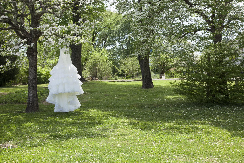 Wedding+Dress+hanging+in+Dogwood+Trees.jpeg